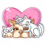 bulka stickers telegram 39
