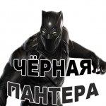 chernaja pantera stickers telegram 09