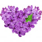 cvety i serdechki stickers telegram 12