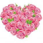 cvety i serdechki stickers telegram 24