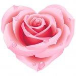cvety i serdechki stickers telegram 33