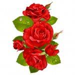cvety i serdechki stickers telegram 45