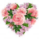 cvety i serdechki stickers telegram 52