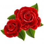 cvety i serdechki stickers telegram 63