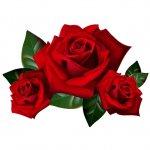 cvety i serdechki stickers telegram 68