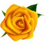 cvety i serdechki stickers telegram 70