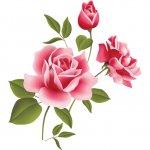 cvety i serdechki stickers telegram 73