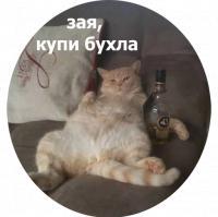 koty kus i cmok stickers telegram 07