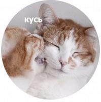 koty kus i cmok stickers telegram 12