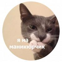 koty kus i cmok stickers telegram 13