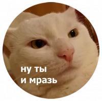 koty kus i cmok stickers telegram 14