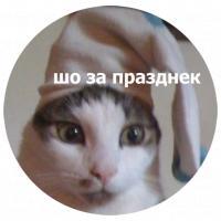 koty kus i cmok stickers telegram 16