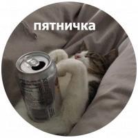 koty kus i cmok stickers telegram 17