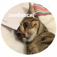 koty kus i cmok stickers telegram 19