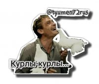 ljubov i golubi stickers telegram 23