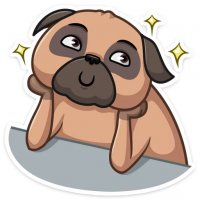 mops bun stickers telegram 09