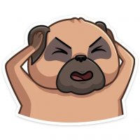 mops bun stickers telegram 24