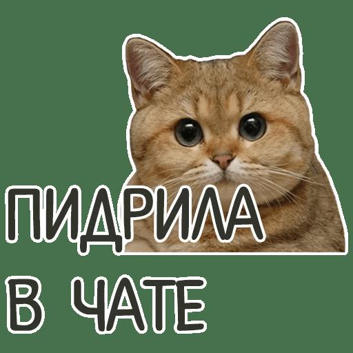 otbitye stickers telegram 82