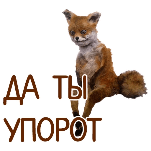 otbitye stickers telegram 86