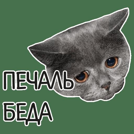 otbitye stickers telegram 93