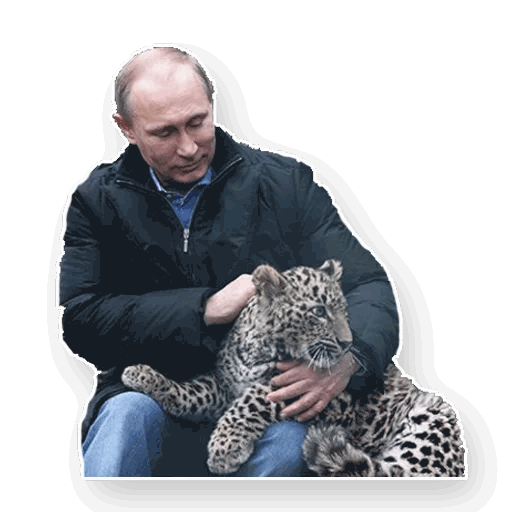 putin stickers telegram 20