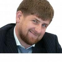 ramzan kadyrov stickers telegram 11