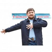 ramzan kadyrov stickers telegram 13