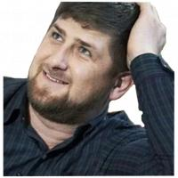 ramzan kadyrov stickers telegram 15