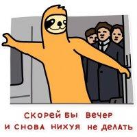 svobodnyj ot zabot lenivec stickers telegram 102