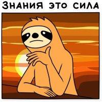 svobodnyj ot zabot lenivec stickers telegram 47