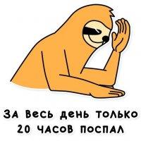 svobodnyj ot zabot lenivec stickers telegram 58