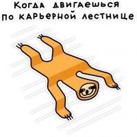 svobodnyj ot zabot lenivec stickers telegram 99