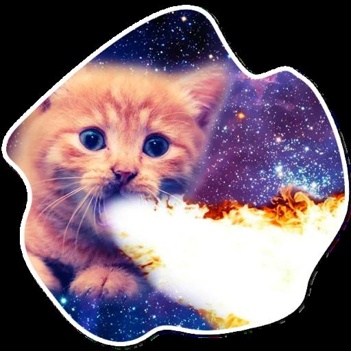 kosmicheskie koty stickers telegram