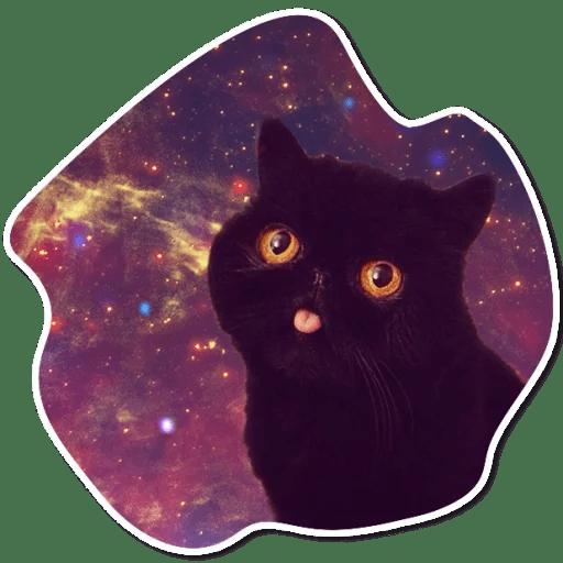 kosmicheskie koty stickers telegram 02