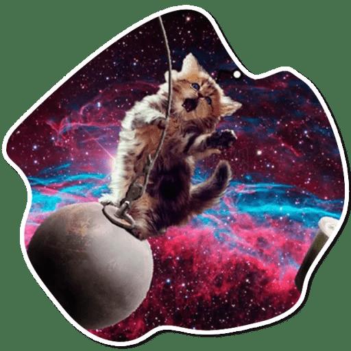 kosmicheskie koty stickers telegram 06