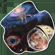 kosmicheskie koty stickers telegram 10