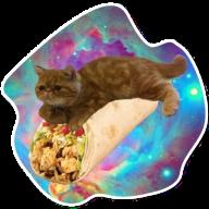 kosmicheskie koty stickers telegram 11
