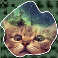 kosmicheskie koty stickers telegram 12