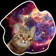 kosmicheskie koty stickers telegram 13