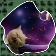 kosmicheskie koty stickers telegram 18