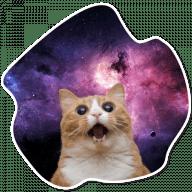 kosmicheskie koty stickers telegram 19