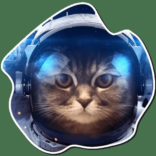 kosmicheskie koty stickers telegram 20