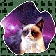 kosmicheskie koty stickers telegram 22