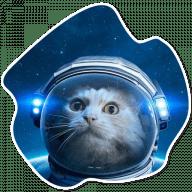 kosmicheskie koty stickers telegram 23