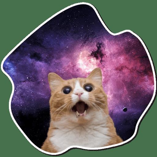Стикеры Космические коты