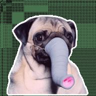mops stickers telegram 02