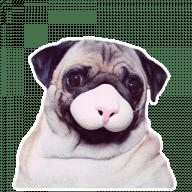 mops stickers telegram 03