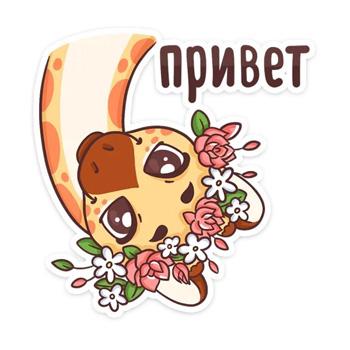 Стикеры Кокосик