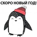 stikery novogodnij pingvin telegram 14